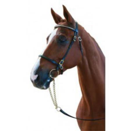 Collegiate In Hand Bridle with Clincher Browband