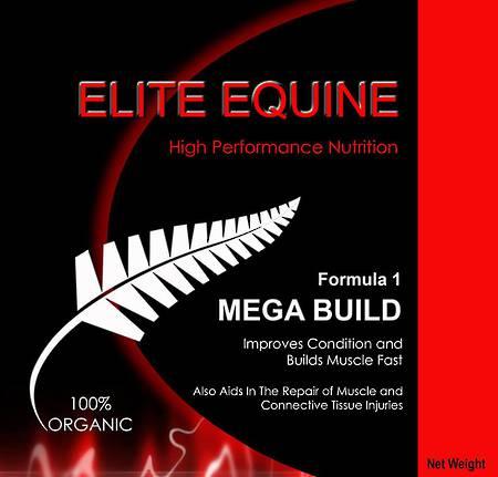 Elite Equine Mega Build