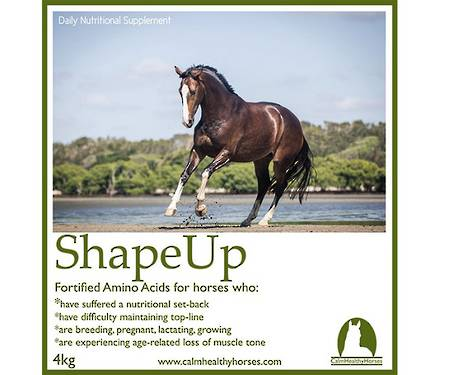 Calm Healthy Horses - Shape Up