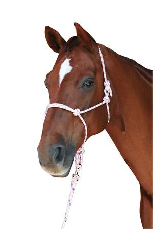 Roma Rainbow Rope Headcollar And Lead Set
