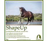 Calm Healthy Horses - Shape Up