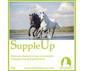 Calm Healthy Horses - Supple Up