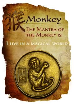 monkey(2)