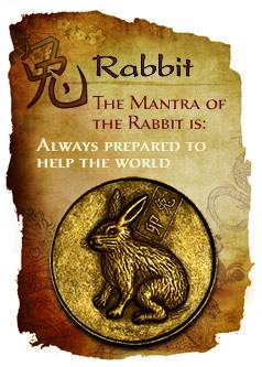 rabbit(2)