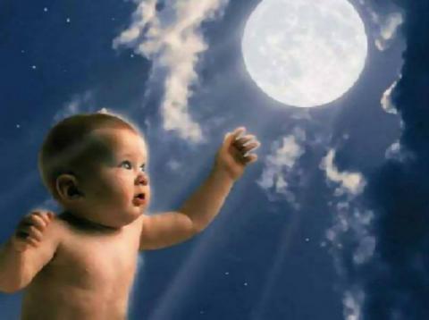 child main2-701-206