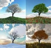 seasons 1
