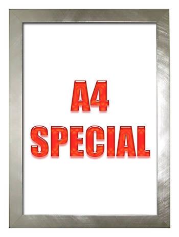 A4 Silver Frame 2782