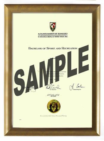 AUT Degree Gold Frame 802 CONSERVATION