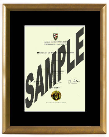 AUT Degree Gold Frame 8433 CONSERVATION
