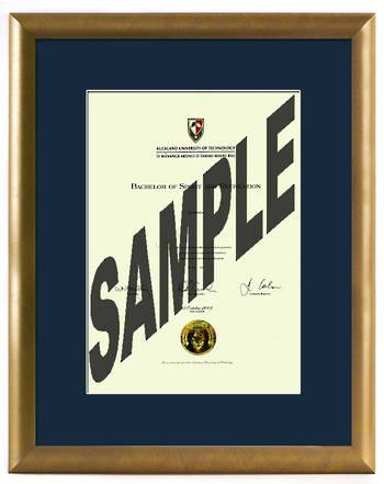 AUT Degree Gold Frame 837