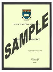 Auckland University Degree 1031p