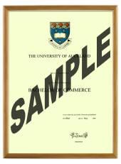 Auckland University Degree 103hon