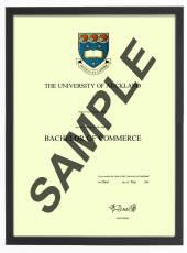 Auckland University Degree 406sb