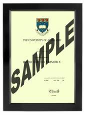 Auckland University Degree 699sb
