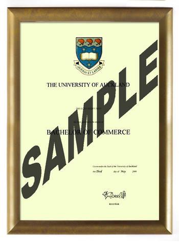 Auckland University Degree Gold Frame 802