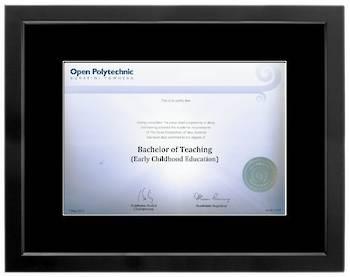 Open Polytechnic Degree 699sb210