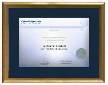 Open Polytechnic Degree Gold Frame 837