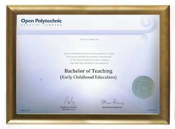 Open Polytechnic Degree Gold Frame 802