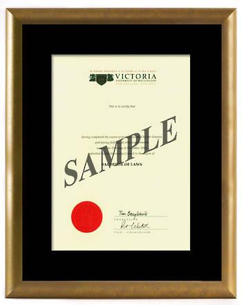 Victoria Degree Gold Frame 8433 CONSERVATION