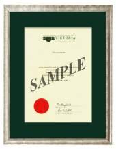 Victoria Degree Silver Frame 264