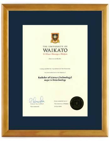 Waikato Degree 28hon 837