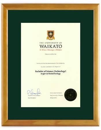 Waikato Degree 28hon 264