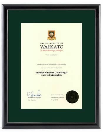 Waikato Degree 28mb 264