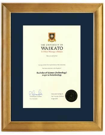 Waikato Degree 63rs 837