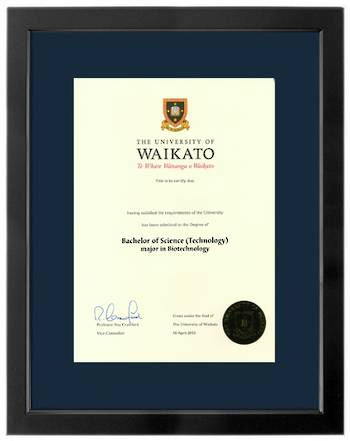 Waikato Degree 699sba423 CONSERVATION
