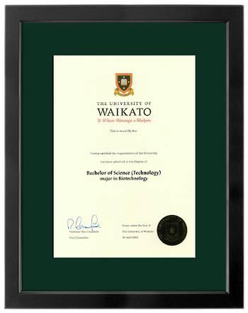 Waikato Degree 699sb 264