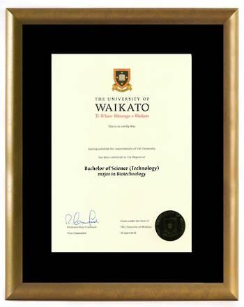 Waikato Degree Gold Frame 8433 CONSERVATION