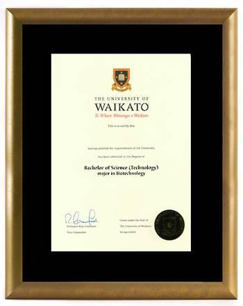 Waikato Degree 802gbr 210