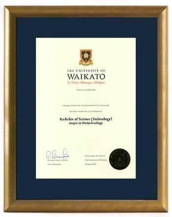 Waikato Degree Gold Frame 423 CONSERVATION