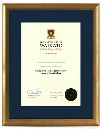 Waikato Degree Gold Frame 837