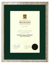 Waikato Degree Silver Frame 8447 CONSERVATION