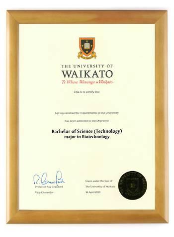 Waikato Degree 28hon