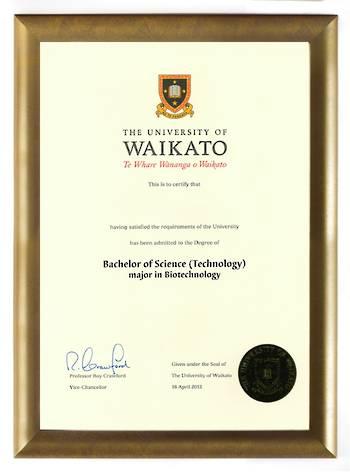 Waikato Degree Gold Frame 802 CONSERVATION