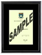 Auckland University Degree 28mb210