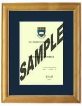 Auckland University Degree 63rsa423 CONSERVATION