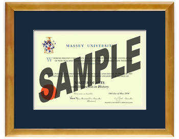 Massey University Degree 28hon837