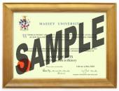 Massey University Degree 63rs