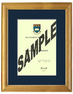 Auckland University Degree 63rs837