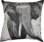 22942C Asian Elephant - Black / Cream
