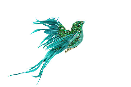 Clip, Green & Turquoise Feather Bird 20cm