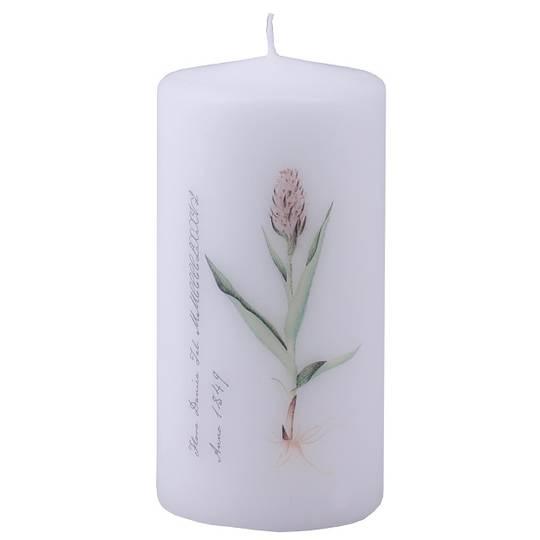 Flora Danica Pillar Candle, Orchid