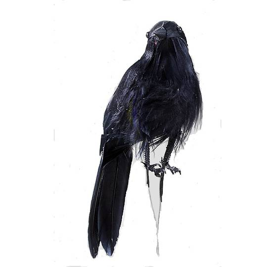 BirdWire Black Feathered 11cm