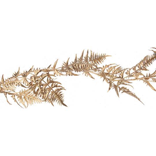Gold Fern Garland 1.8mtr