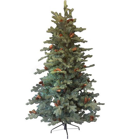 Spruce with cones Tree 1.8mtr