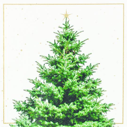 Paper Napkins 33cm, Fir Tree