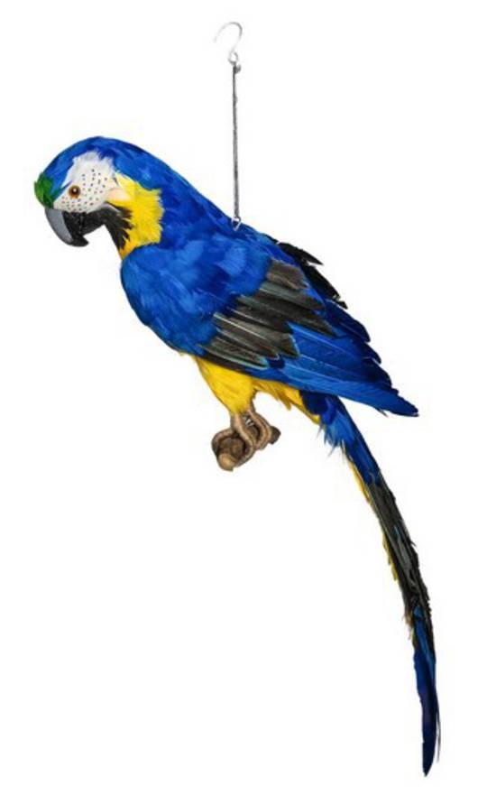Blue Macaw 68cm